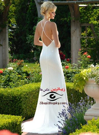 عکس زیباترین دختردنیا,عکس زن زیبا,عکسهای زیباترین زنان دنیا,عکسهای زیبا از دختران ناز،عکس زنان زیبا،خواننده ها و هنرپیشه های معروف ، زیباترین عکس هاو زیباترین تابلوها                                  www.zibayi.blogsky.com