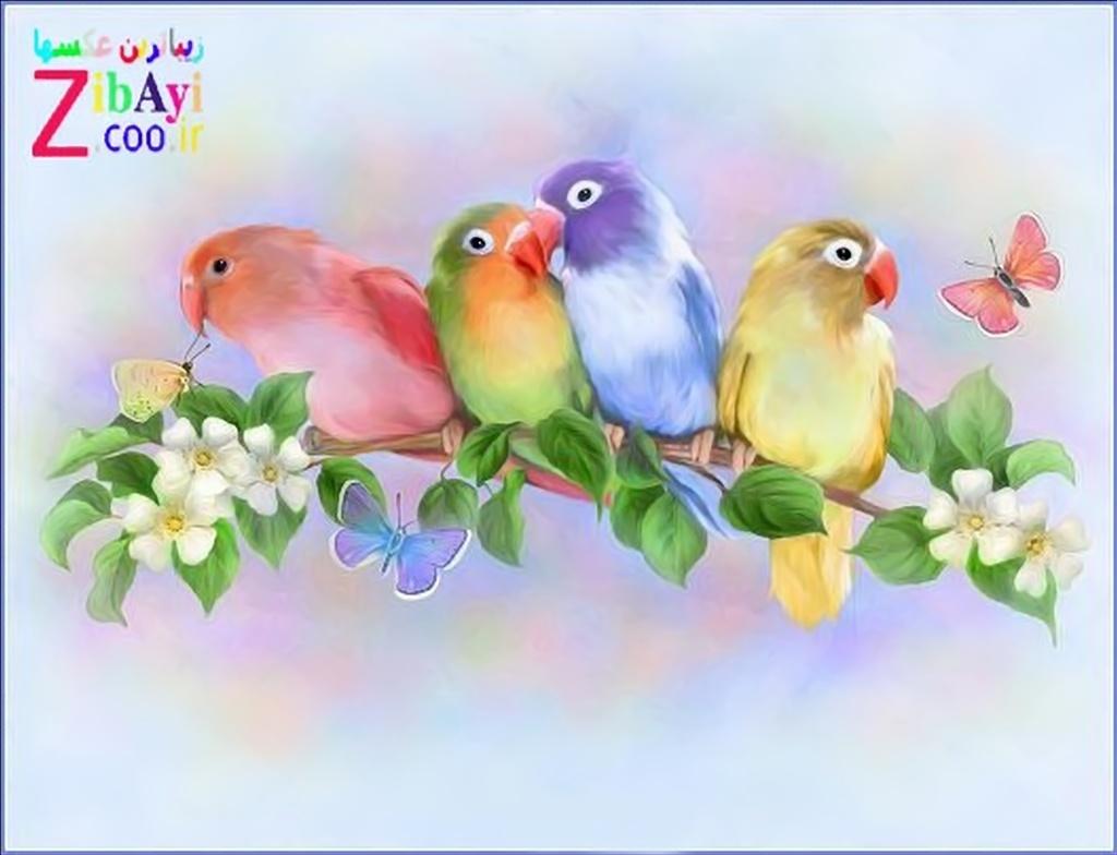 persian , free weblog,ziba , zibayi , girl , picture , photo , beauty , beautifull  women , dokhtar , zan ,zen , Best , world beauti , Iran , Irani , عکس زیباترین دختردنیا, عکس زن زیبا